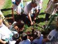 Implantacao de Lixeira e plantio de mudas - Creche e Pre - Escola Izolina Zancope Murari (11)